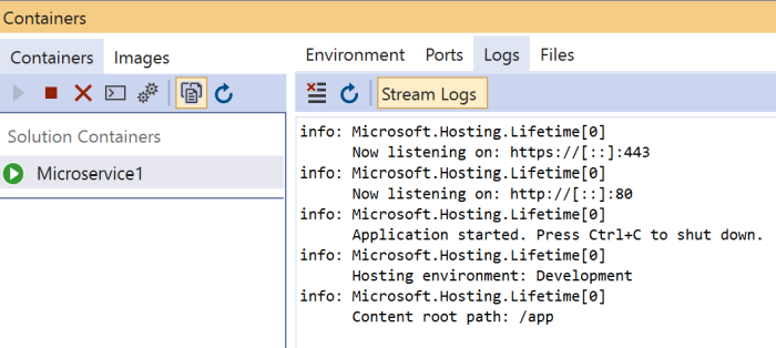 Visual Studio Container Window